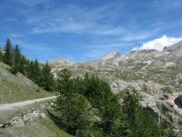 Salita al Colle Basset - al centro la Cima del Vallonetto e la Punta Valfredda