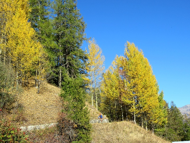In prossimità di Ulrichen - Colori autunnali