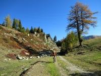 In direzione di Unnerbodme sulla forestale che ha inizio da Rhonequelle