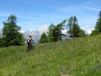 Sentiero da Sädolti per il Gebidumpass, il Bietschhorn (3.934) ci accompagna sempre