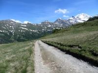 Inizio della discesa su sterrato nella Nanztal dal Gebidumpass, sullo sfondo le vette che sovrastano il Passo del Sempione, tra cui il Fletschhorn (3.985)