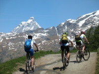 Salita agli alpeggi dal Crest