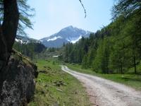 Alpe di Nana inferiore