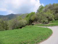 Salita all'Alpe Bolla