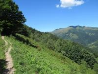 Il single track che collega il rifugio Prabello con l'Alpe Bonello