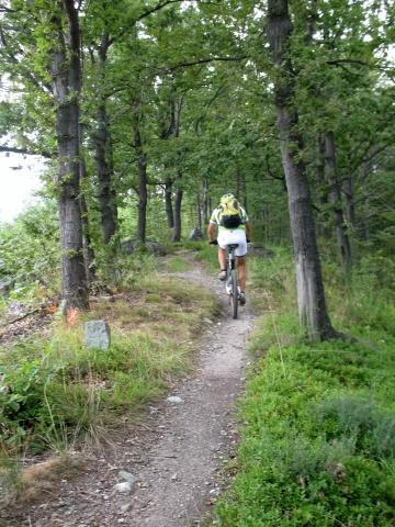 Single-track nella Serra
