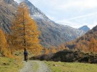 Val di Carassino, tra l'Alpe Cassimoi e l'Alpe Bresciana - colori autunnali