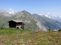 Les Suches, panorama sulla catena del Monte Bianco con la vetta principale sulla sinistra  (mt. 4.810)