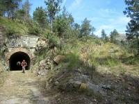 All'interno della valle del torrente Gorzente