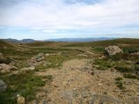 Alta Via dei Monti Liguri verso il Colle Gandolfi - Uno dei tratti più impegnativi della salita