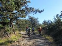 L'ottima forestale che da Pratorondanino sale alle Capanne di Marcarolo