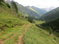 Il sentiero che scende dall'Alpe Forna all'Alpe Campo di Torba