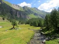 Alpe Campo la Torba - panorama