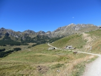 Alpe Tellinod