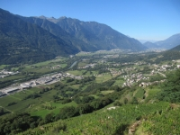 Bel panorama su fondovalle percorrendo la Strada del vino