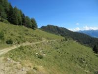 Percorrendo lo sterrato che collega l'Alpe Morscenzo con il Lago di Colina