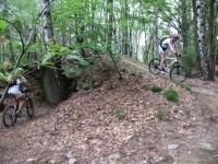 Single track nel bosco - particolare