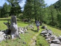 Discesa dal Furggupass, sentiero per Gabi