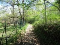 Salita al Monte Sant'Elia, tratto di sentiero che conduce alla Sella di Rendemuro