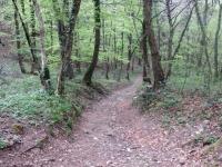 Il sentiero che collega la località Crocefisso con il Monte Casolo