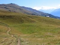 Il sentiero che si snoda nei pascoli superiori della Oberi Alp