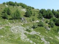 Il sentiero di discesa dalla Oberi Fäsilalpu per Stafel