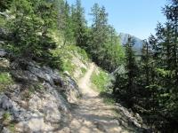 Bellissimo sentiero per la Niwenalp