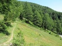 Il sentiero che collega la Niwenalp con Bachalp