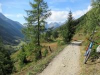 Il bel sentiero che dallo Schwarzsee conduce a Tellistafel