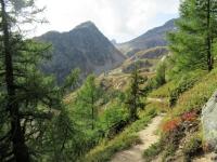 Sentiero per Kummenalp