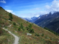 Il sentiero che collega Restialp con Faldumalp