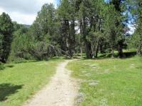 Il sentiero natura del Lucomagno che da Acquacalda conduce al Passo