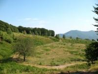 Alpe Vicaria
