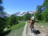 Trail che scende dalla Madonna del Cotolivier