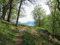 Sentiero finale che dall'Alpe Davrosio riporta a Tesserete