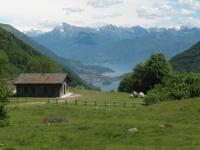 Alpe di Cerano con vista sul Lago