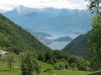 Lago di Como: isola Comacina, dosso di Lavedo, sullo sfondo Bellagio dall'Alpe di Cerano