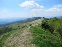 L'inizio della discesa dalla sommità del Monte Bolettone. Sullo sfondo il Monte Boletto