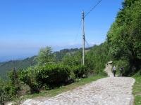 La strada delle Colme in prossimità della Baita Boletto