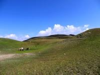 Il verde pianoro che si incontra lungo il sentiero che sale al Breithorn, sullo sfondo la vetta
