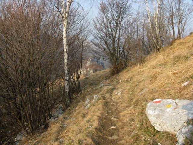 Single-track verso Terz\'Alpe