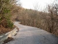 Breve salita al Monte Prasanto