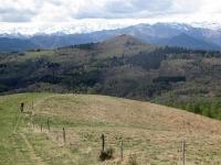 Il tratto finale di ripida salita sui pratoni del Monte del Falò -  Sullo sfondo la catena del Monte Rosa e l'arco alpino italo-svizzero nord occidentale