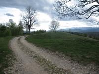 """Lo sterrato della """"Passeggiata degli alpeggi  - Monte Falò e tre montagnette"""""""