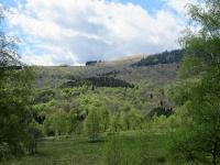 Bel contrasto di colori primaverili lungo le pendici del Monte Mottarone