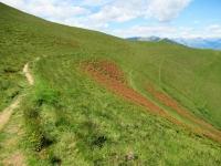 Il sentiero che conduce dall'Alpe di Mezzegra all'Alpe di Tremezzo
