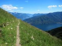 Il sentiero che  taglia le pendici del Monte Crocione