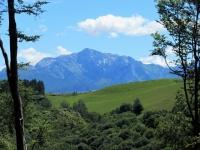 Le Grigne sullo sfondo del valico Boffalora