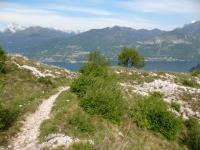 Discesa verso Tremezzo - sentiero