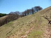 In direzione dell'Alpe di Colonno